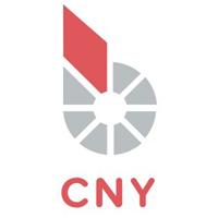 bitCNY logo