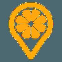 LoMoCoin logo